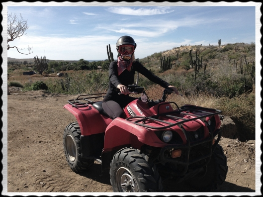 tracy stern atv mexico hills